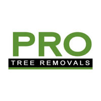 Pro Tree Removal Brisbane
