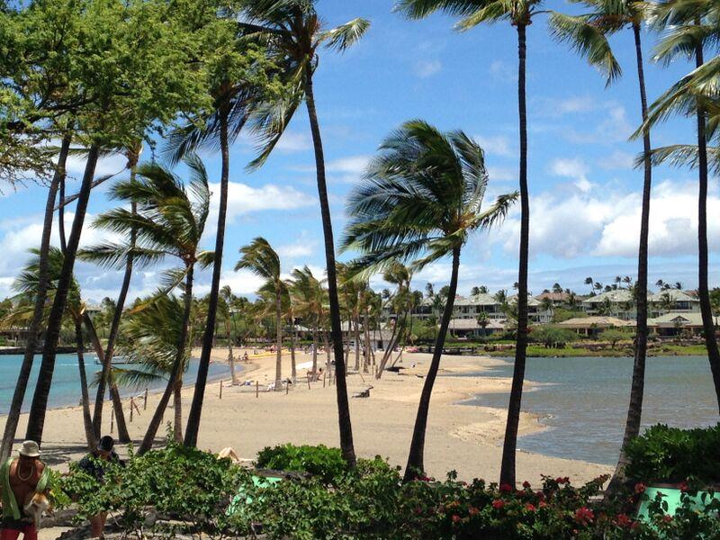 hawaii-usa-tour-amigo