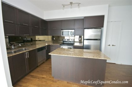 Designer Kitchen Cabinetry With Stainless Steel Appliances, Granite Counter Tops, Undermount Sink & A Mirrored Backsplash.
