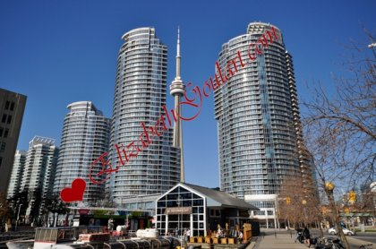 Welcome To The WaterClub Condominiums On Queens Quay.