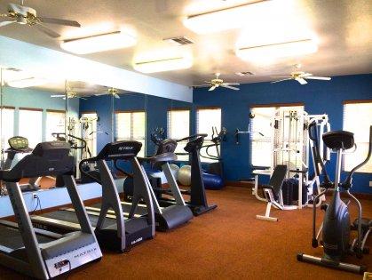 cardio, machines, free weights, pool view
