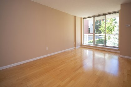 Bright Floor-To-Ceiling Windows With Hardwood Flooring Throughout Facing The Courtyard Garden.