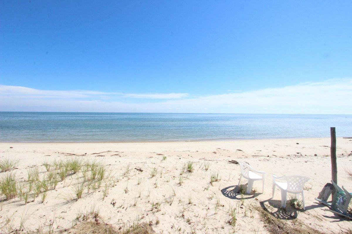 chesapeake beach hispanic singles Chesapeake beach is a town in calvert county, maryland its major attractions include the chesapeake beach railway station, the chesapeake beach rail trail, a water park, marinas, piers, and.