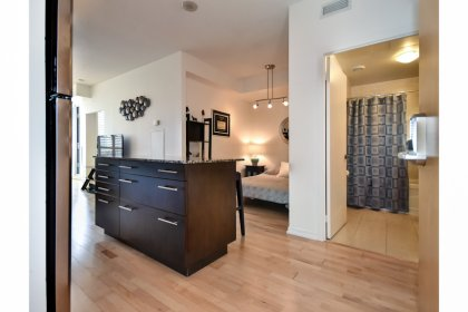 Foyer With Hardwood Flooring.