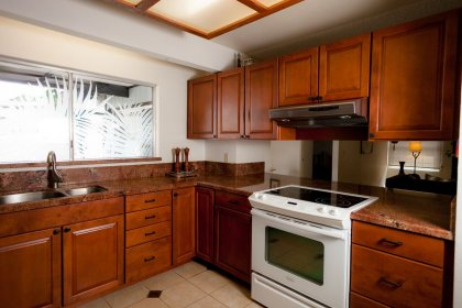 Open bright kitchen with a nice palm leave motif on the kitchen window.