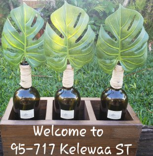 Welcome to Beautiful Kelewaa ST. The name Kelewaa is the name of the brightest shinning star Sirus.
