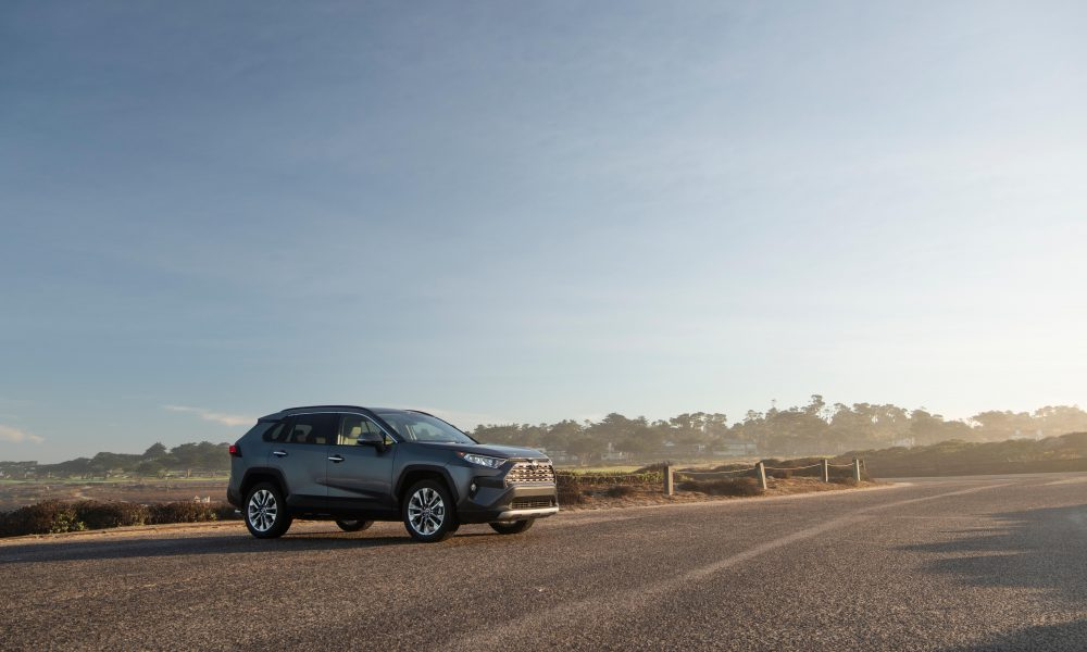 2019 Toyota RAV4 Limited Magnetic Gray