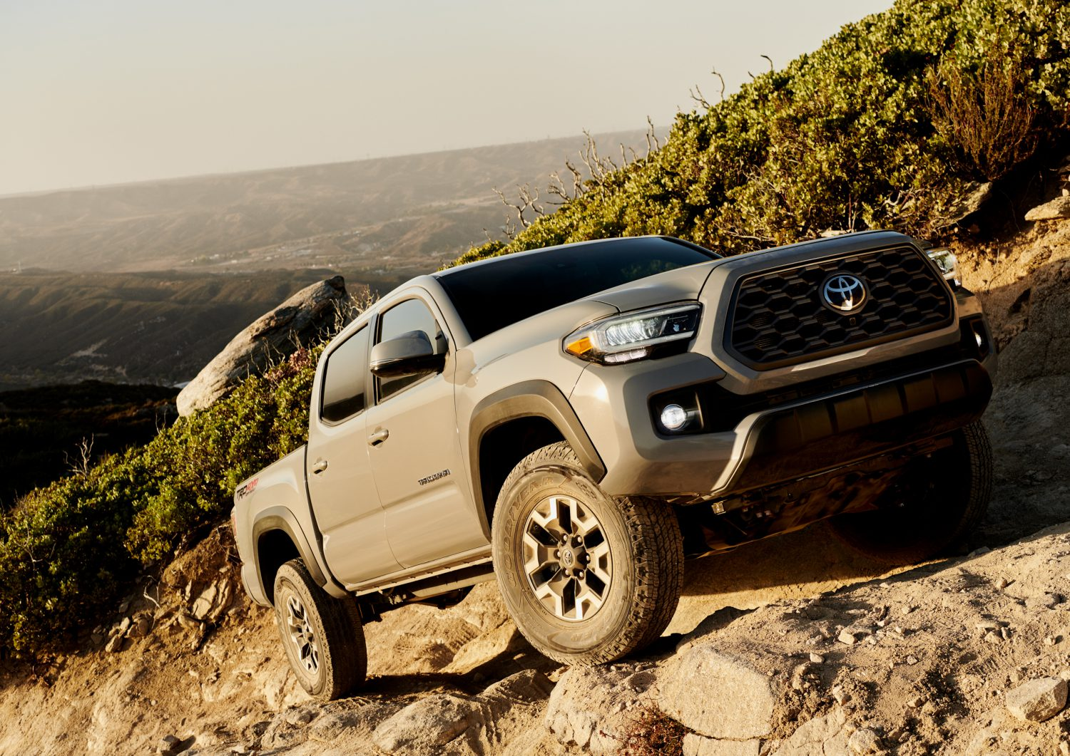 Tacoma Back Pages >> 2020 Toyota Tacoma Positioned To Continue Segment Leadership