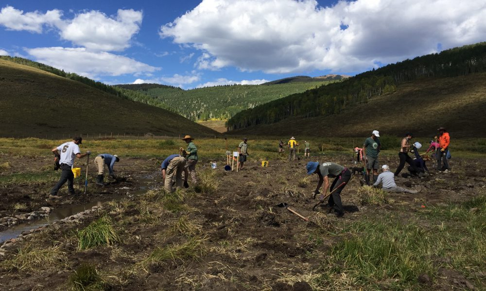 Roaring Fork Outdoor Volunteers 2017 EDE Grantee