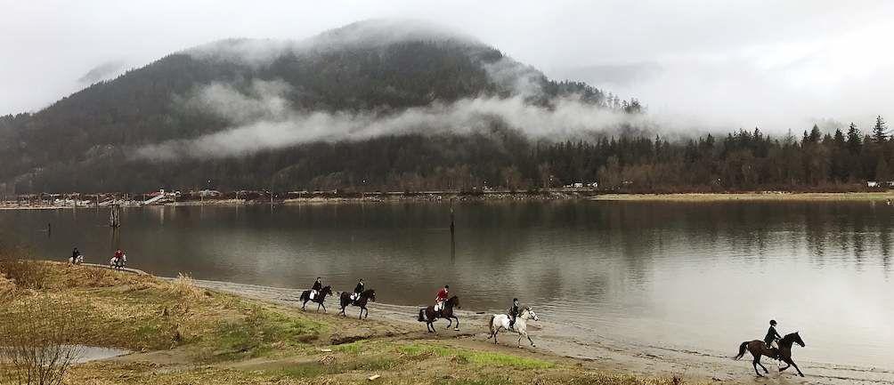 RAV4 World of Weekends Horses Running in Frotn of Water
