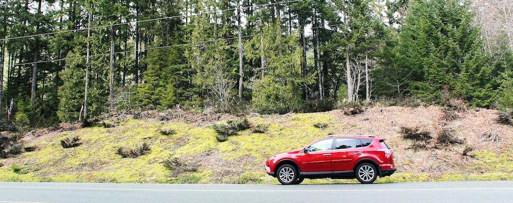 RAV4 World of Weekends Tofino Driving by the woods