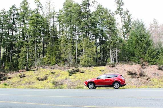 RAV4 on the road to Tofino