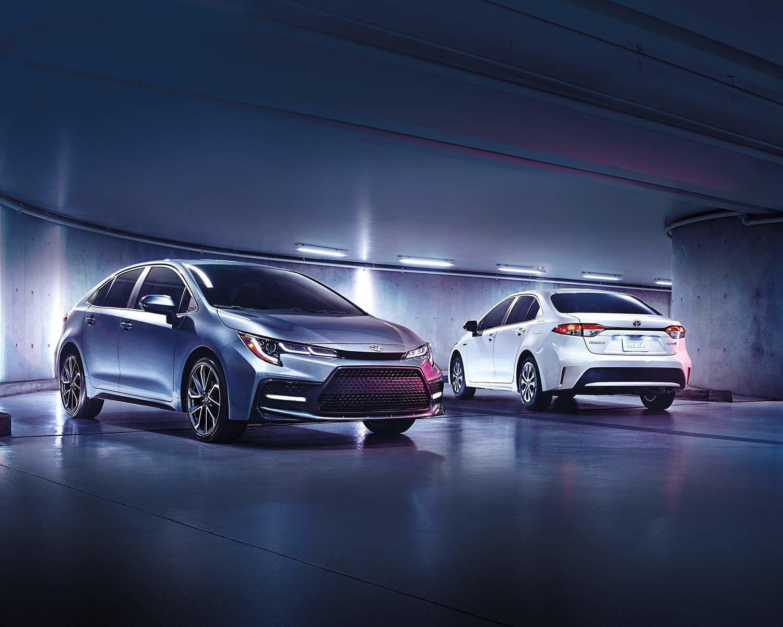Corolla XSE montrées en Gris céleste métallisé et Corolle hybride montrées en Super blanc