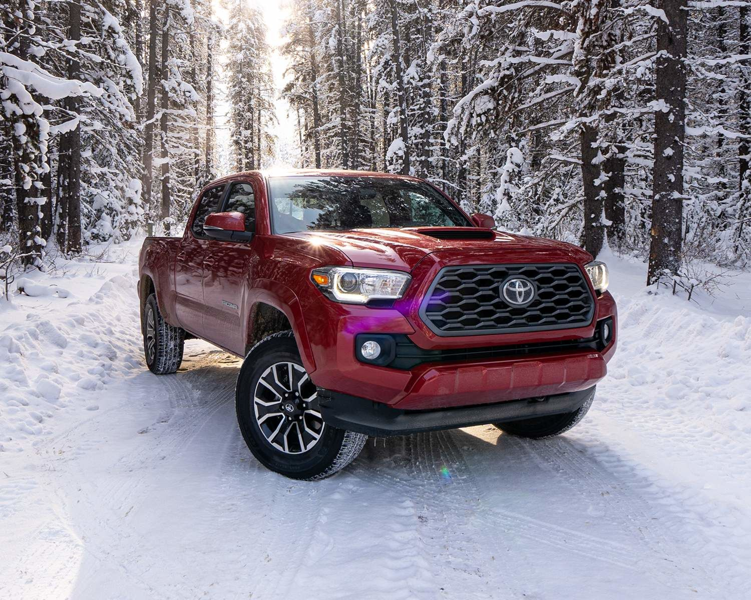 Tacoma TRD Sport Premium shown in Barcelona Red Metallic