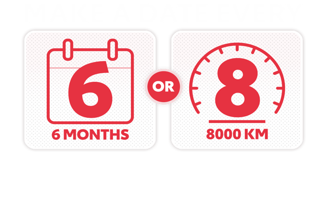 Make a Date Every 6 months or 8,000KM