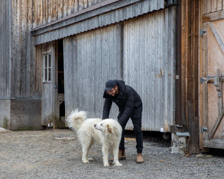 Michael greets dog at Gaspésie Sauvage, Quebec