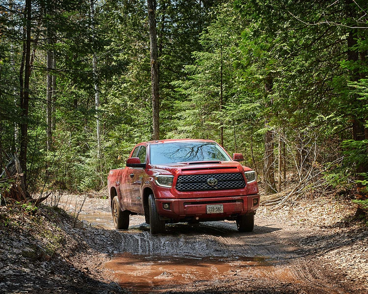 2020 Tundra 4x4 Double Cab TRD Sport in Barcelona Red