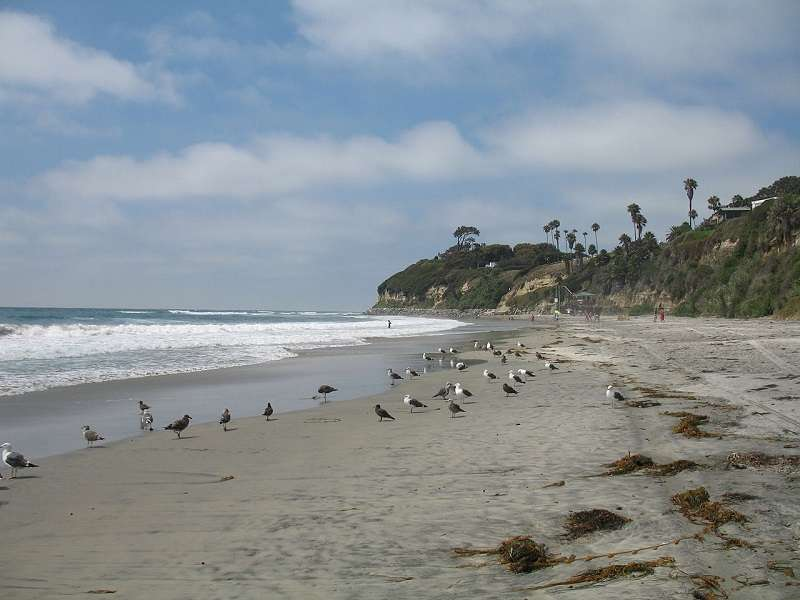 Swami's Beach Encinitas California