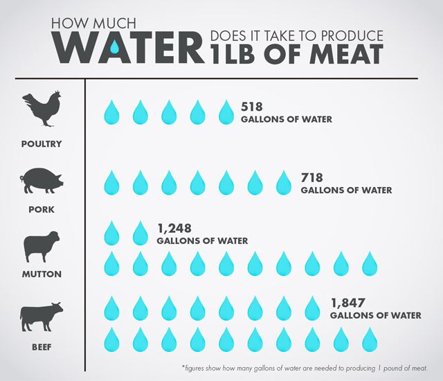 how much water does it take to produce 1lb of meat