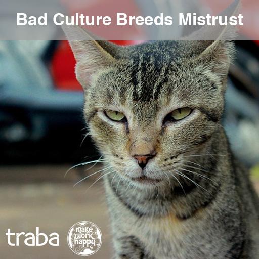 Bad Culture Breeds Mistrust