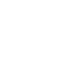Traction Limited Liability Company
