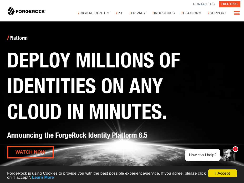 ForgeRock - Alternatives and Competitors   Tracxn