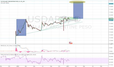 USDARS: Dolar peso argentino y el que apuesta al dólar ¿Pieder...?