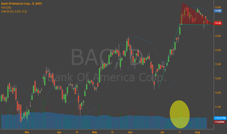 BAC: Bull Flag?