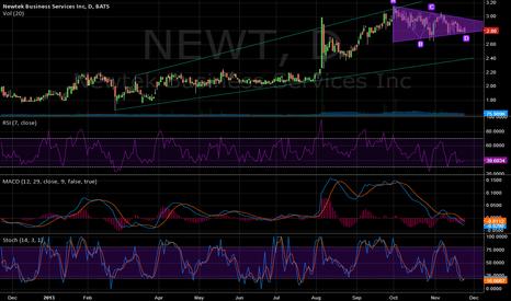 NEWT: NEWT, Bullish Wedge, MACD and RSI... Promising