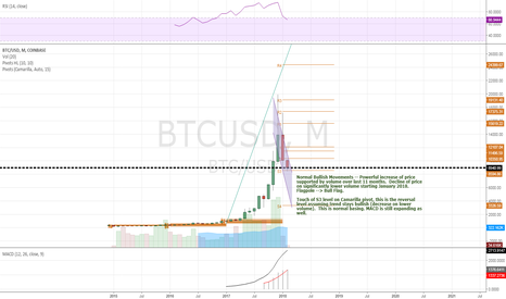 BTCUSD: BTC/USD - Normal Bullish Price Movements (Month)