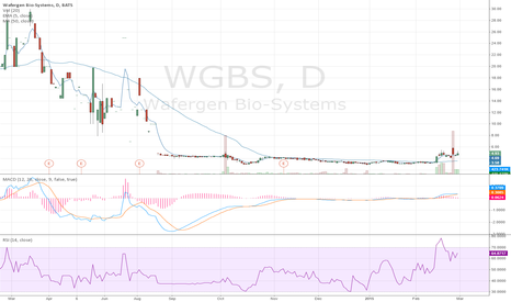 WGBS: The Huge Potential of WGBS