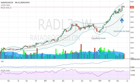 RADL3: Radl3 cup without handle formation?