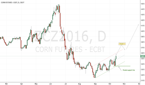 ZCZ2016: CBoT corn long play carries on