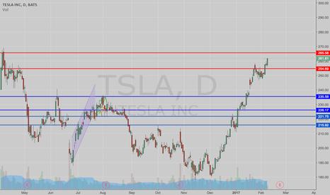 TSLA: Is Tesla Reaching Another Peak?
