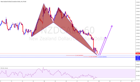 NZDCAD: Crab Bullish
