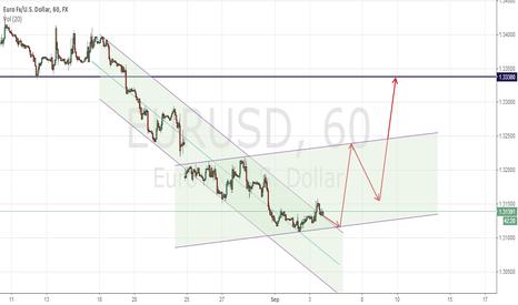 EURUSD: OPTIONAL IN EURO