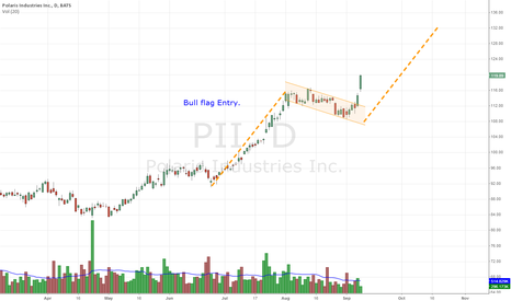 PII: $PII Bull Flag Entry