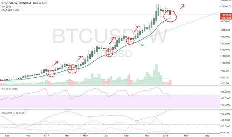 BTCUSD: EMA-20 has always provided support on  weekly
