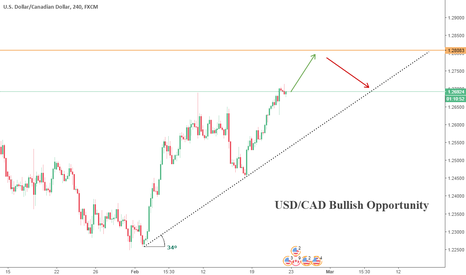 USDCAD: USD/CAD Bullish Opportunity