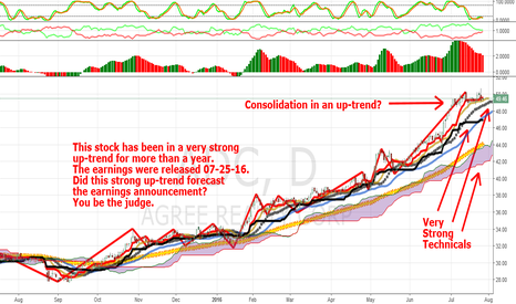 ADC: Earnings Vs Chart Patterns: Agree Reality-ADC: An Update