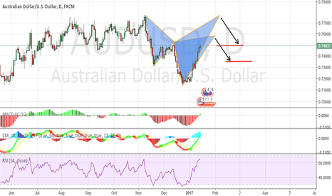 AUDUSD: bearish shark pattern