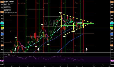 AAPL: Which way will it go?