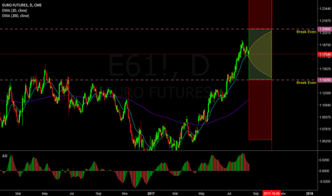 E61!: Neutral trade on the Euro  (Skewed Strangle)