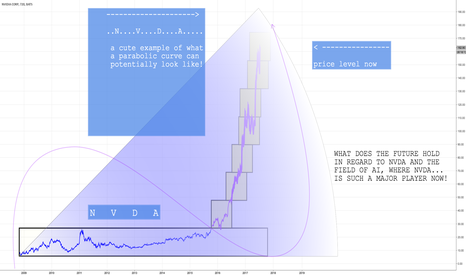 NVDA: NVDA what does the future hold sor such a parabolic stock?