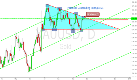 XAUUSD: Wait the next candle