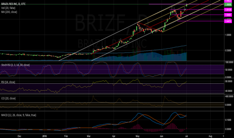 BRIZF: BRIZF: The Next Momentum Stock?