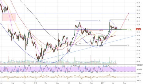 TDC: TDC Double Cup & Handle?! Strong case for breakout