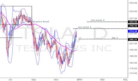 TSLA: TSLA-back at reversal zones-