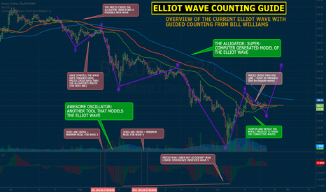 BTCUSD: BTC ELLIOT WAVE: BIG PICTURE & COUNTING GUIDE