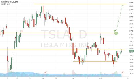 TSLA: Markets Alert: TSLA